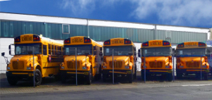 IC Bus / International School Bus